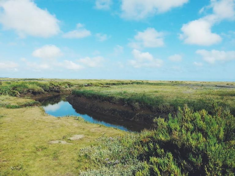 Stiffkey salt marshes, Norfolk